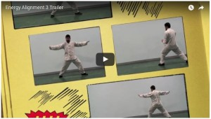 Videos-Meister-Chen